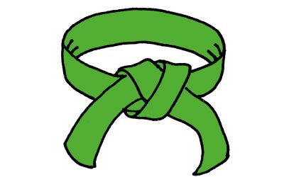 Yellow / Green Belt